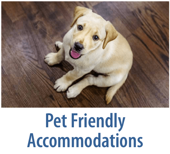Pet Friendly Accommodations