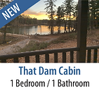 That Dam Cabin Vacation Rental