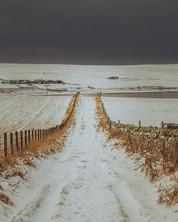 Snow covered track.jpg