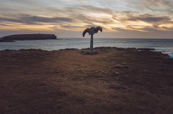 Whale Bone sunset.jpg