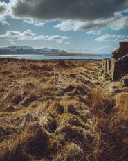 Abandoned cottage at Scorrodale.jpg