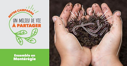La santé des sols en zone agricole
