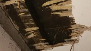 La rénovation de l'alcôve