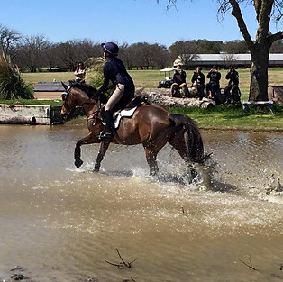 Willow Draw Schooling