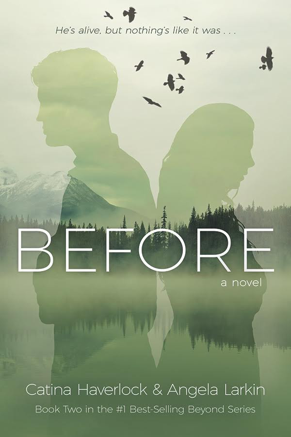 Cover Reveal to Beyond Sequel!