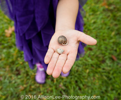 Catching Snails