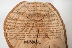 Violated Treaty #9