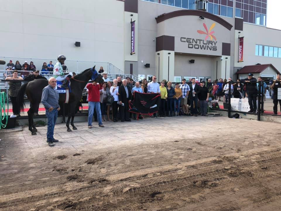 Canadian Thoroughbred Horse Society
