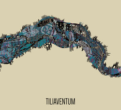 DEISON & MINGLE Tiliaventum BOX CD