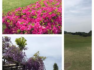 中津川カントリークラブでラウンドレッスン【横浜のゴルフスクール TeeTime快活ゴルフスタジオ】