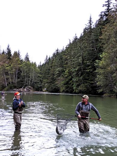 Northern BC Coho Salmon