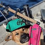 Puppy napping while fishing