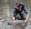 first-steelhead-skeena-region