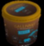 Gallivant-Chocolate-Mockup.png