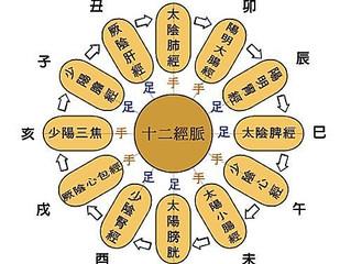 【國際漢方芳療學院】☆漢方經絡芳療實務認證班☆ 4月 周三下午班