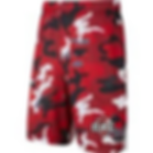 MBE camo shorts.png