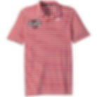 Nike Polo Shirt red stripe.png