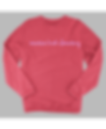 rally corduroy crew pullover pink.png