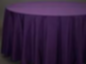plum poly 2 .png