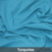 turquoise poly 1.png