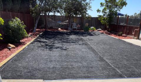 black turf on dirt .jpg
