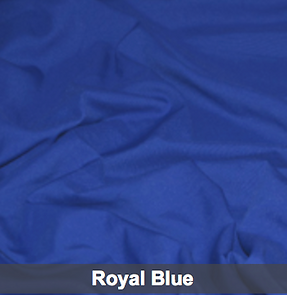 royal blue poly 1.png