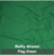 kelly green_flag green poly 1.png