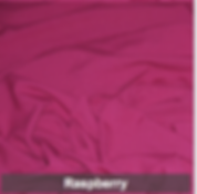 raspberry poly 1.png