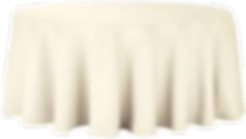ivory poly 2.png