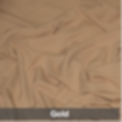 gold 1 poly.png