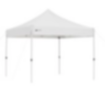 10x10 instant canopy.png