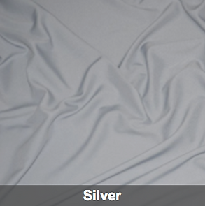 silver poly 1.png