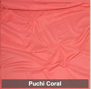 puchi coral poly 1.png