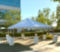 20x20 tent_canopy_edited.jpg
