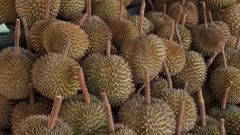 Durian  ...brrr..