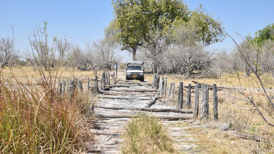Third Brigde, Moremi Nationalpark