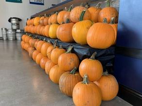 Pumpkin Carving & Brews   October 28-31