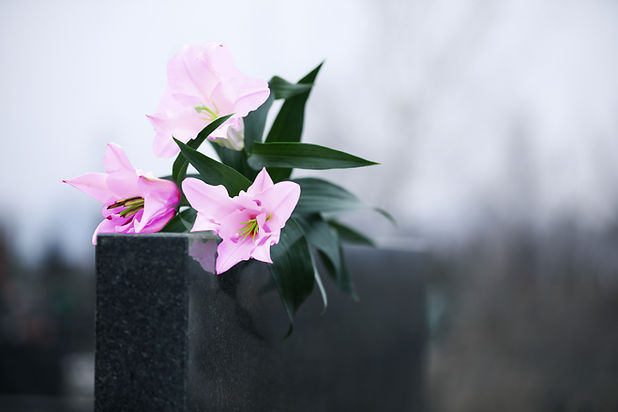 lilac flowers grave.jpg