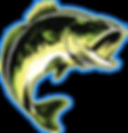 Carp Fish high res.png