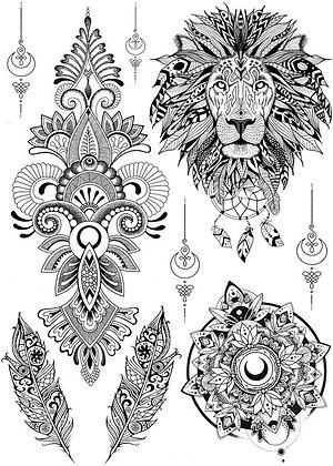 Coffret Lion