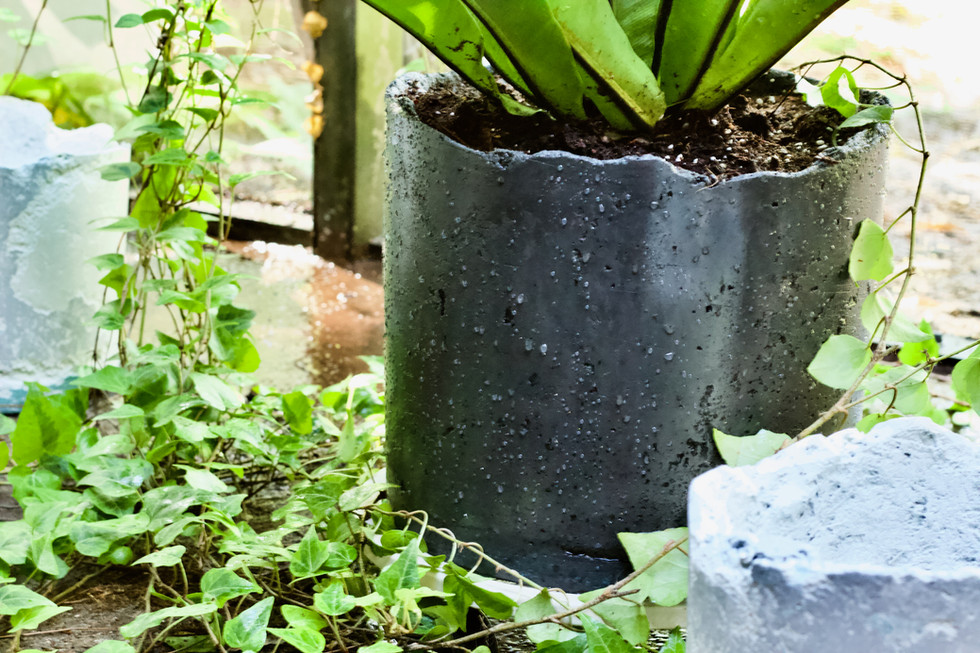 Reclaimed Concrete Pot (Large & Medium)