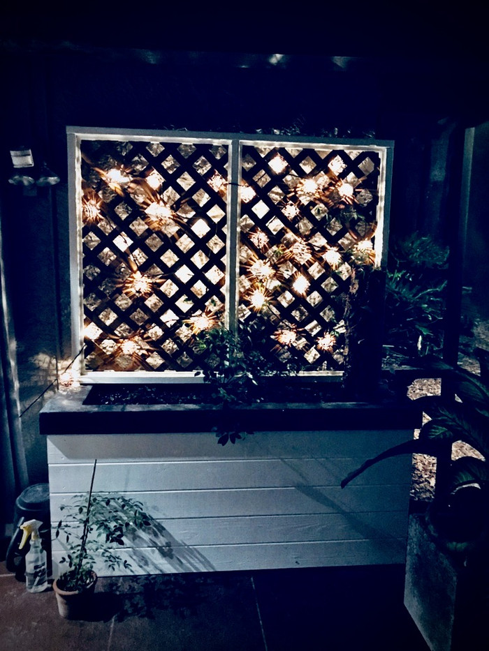 Large Planter w Concrete Top at Night