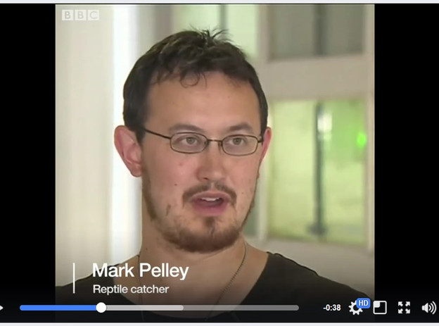Mark Pelley