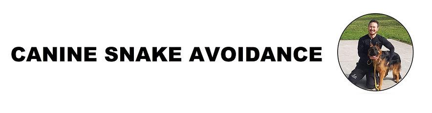 canine snake avoidance 2.jpg
