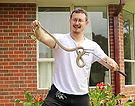 Snake Catcher Epping