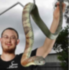 Mark Pelley Snake Hunter Ivanhoe