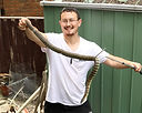 Snake Removal Hurstbridge