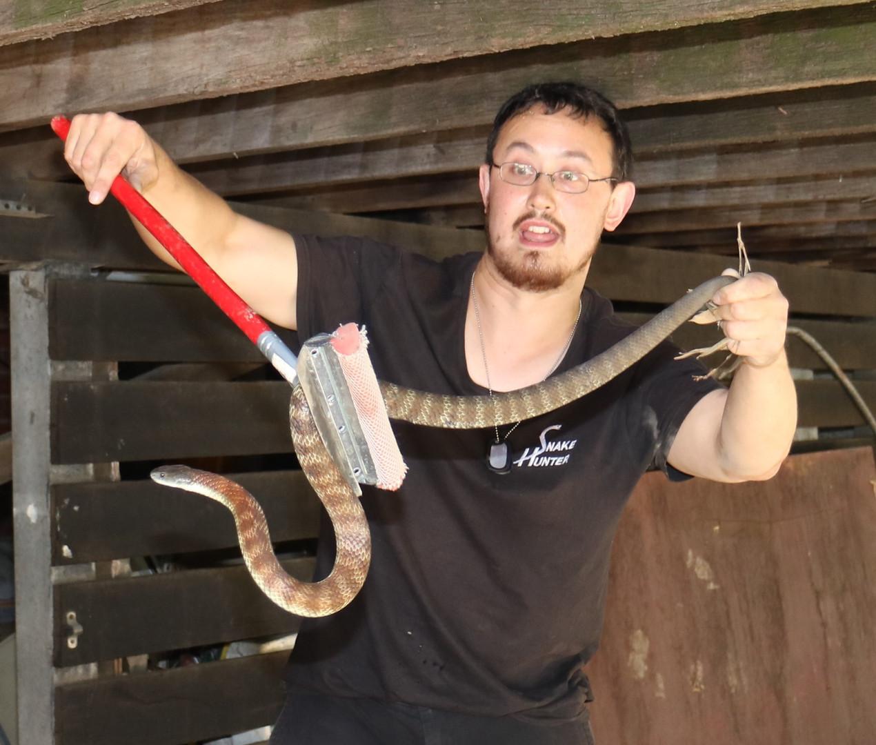 Snake Catcher Eltham