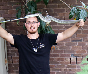 Snake Catcher Port Melbourne
