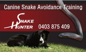 HUNTING DOGS - TEACH THEM TO AVOID SNAKES